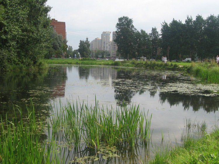 Сад Бенуа