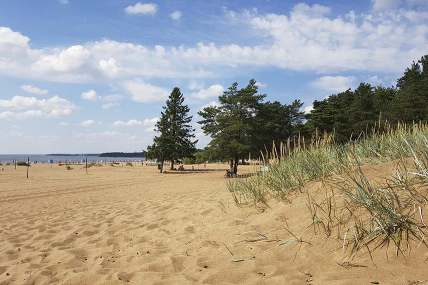 Опубликован список официальных пляжей Петербурга