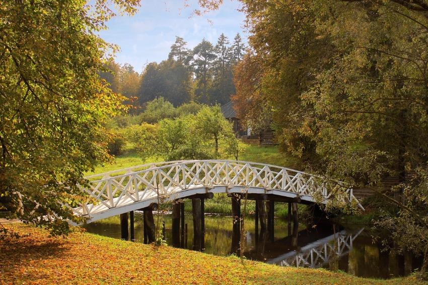 Золотая осень: самые красивые локации Северо-Запада