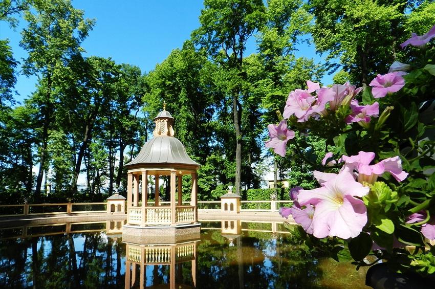 Стосковавшимся по весне: «Ботанические экскурсии по городу»