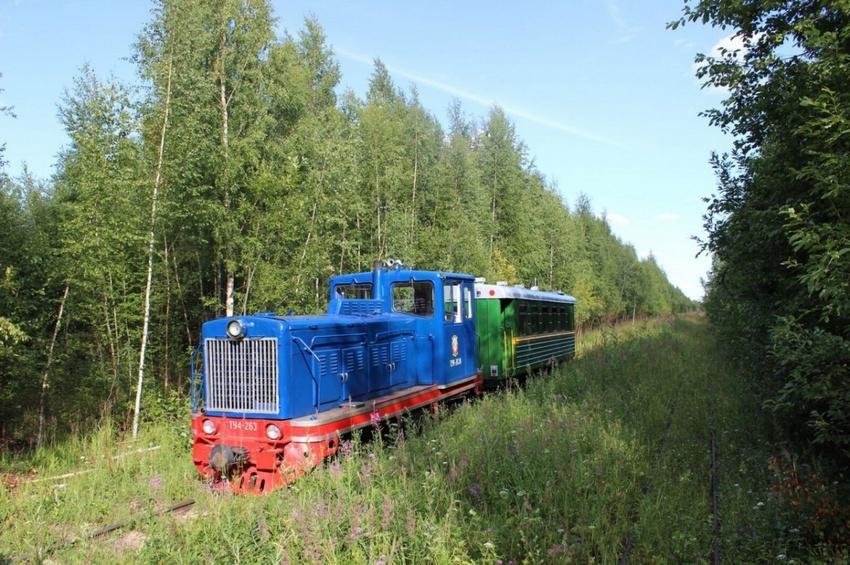 Тёсовская узкоколейная железная дорога: от торфоразработок к музею