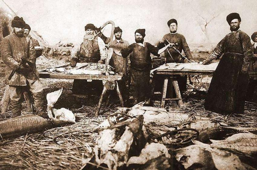 I Всероссийская рыбопромышленная выставка