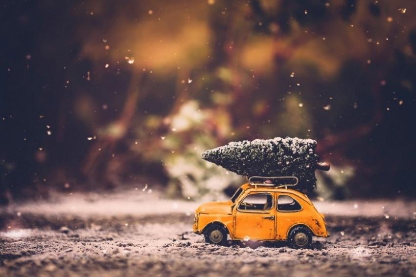 Идеи праздничных путешествий для всей семьи