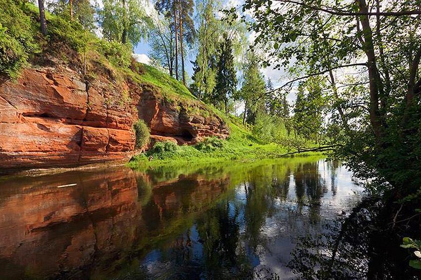 Топ-10 необычных природных объектов Ленинградской области