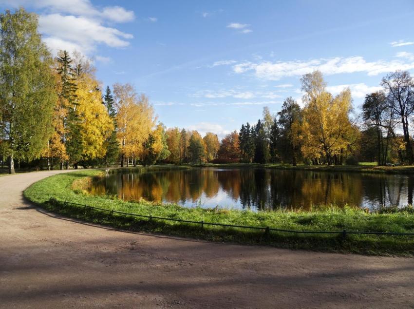 В Павловском парке отреставрируют паром